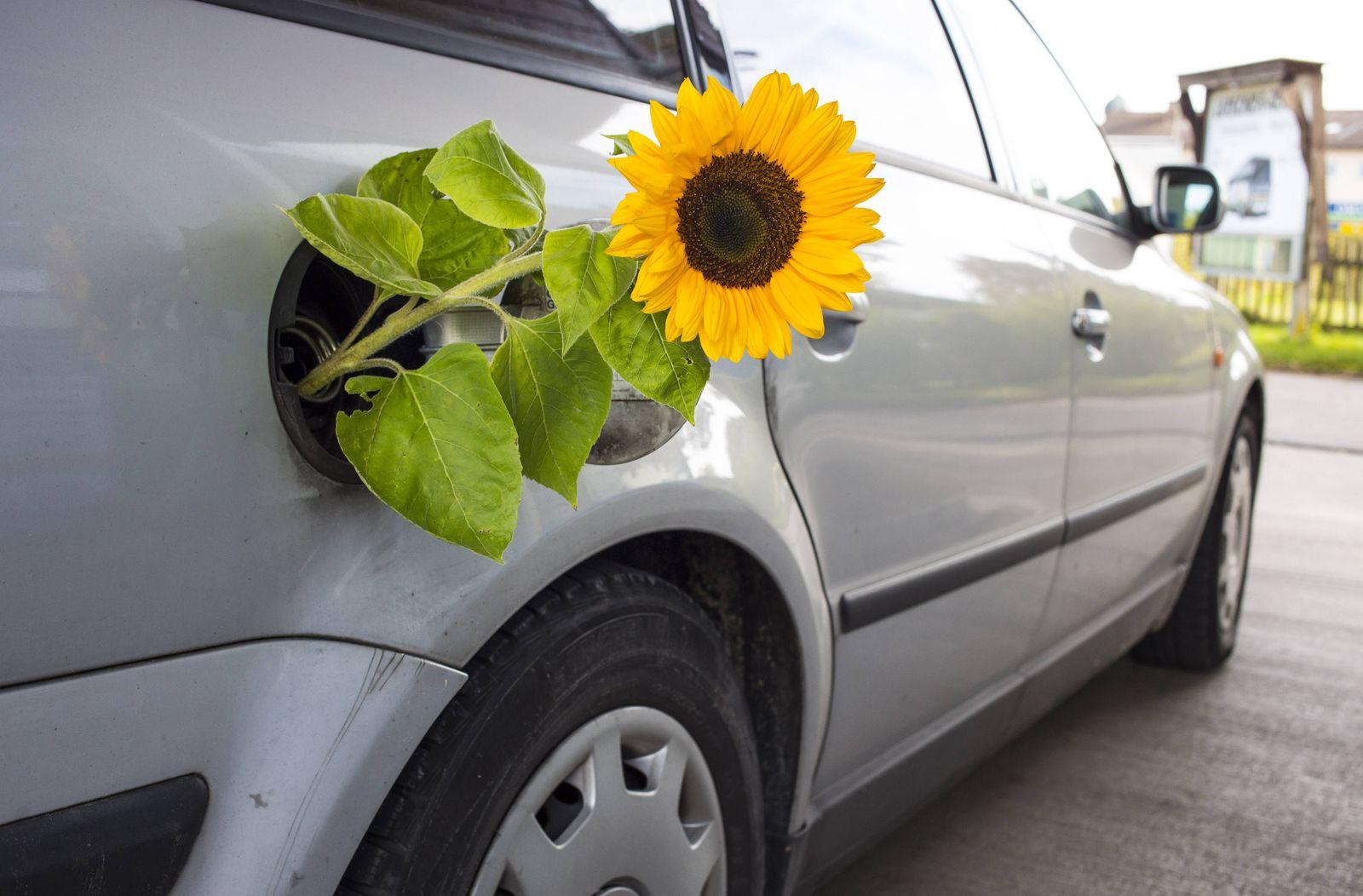 VW / Volkswagen / Kurssturz / Emissionen