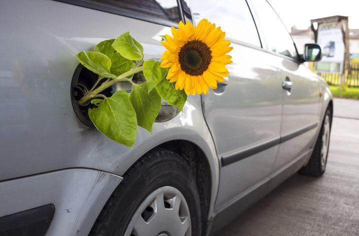 Nicht so umweltfreundlich wie gedacht: Eine VW-Kundin sieht sich durch den Abgasskandal getäuscht, will ihr Auto zurückgeben und verklagt Volkswagen auf Schadenersatz