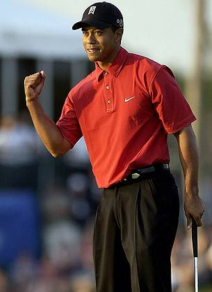 Tiger Woods: Der Popstar des Golfsports