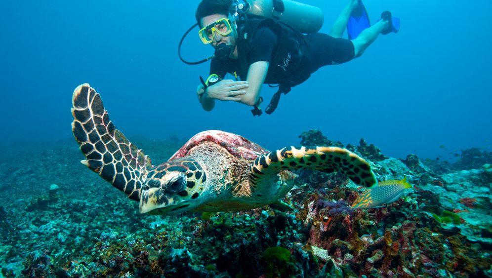 Similan-Inseln: Unterwegs in Unterwasserschluchten