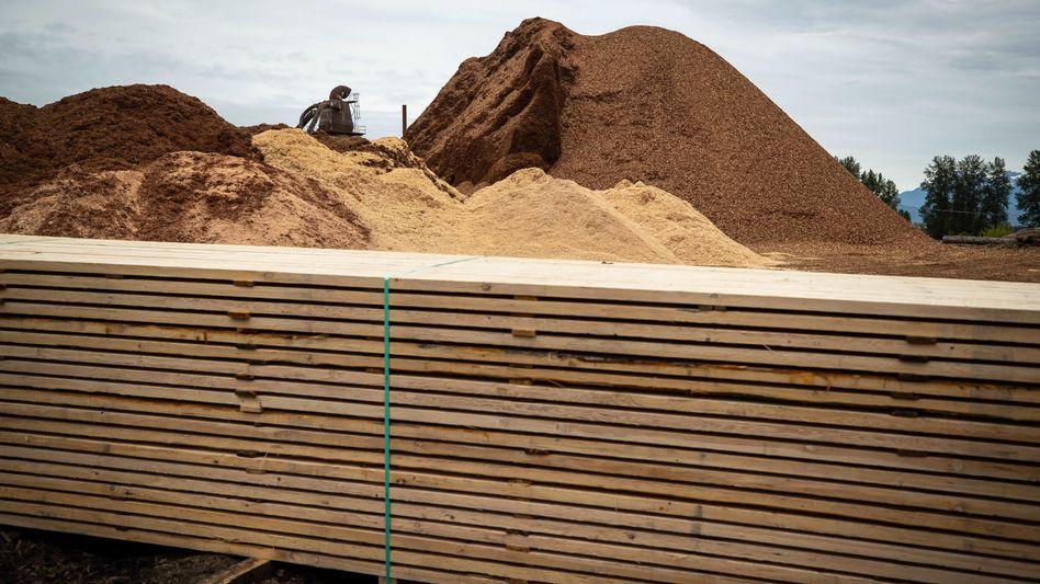 Holzverarbeitung im Sägewerk: Goldene Zeiten für die Säger