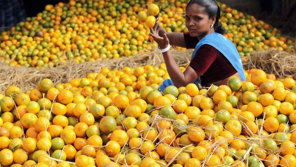 Landarbeiterin in Indien: Die Deutsche Bank soll belegen, dass ihre Finanzprodukte den Hunger in der Welt nicht verschlimmern, fordert Foodwatch
