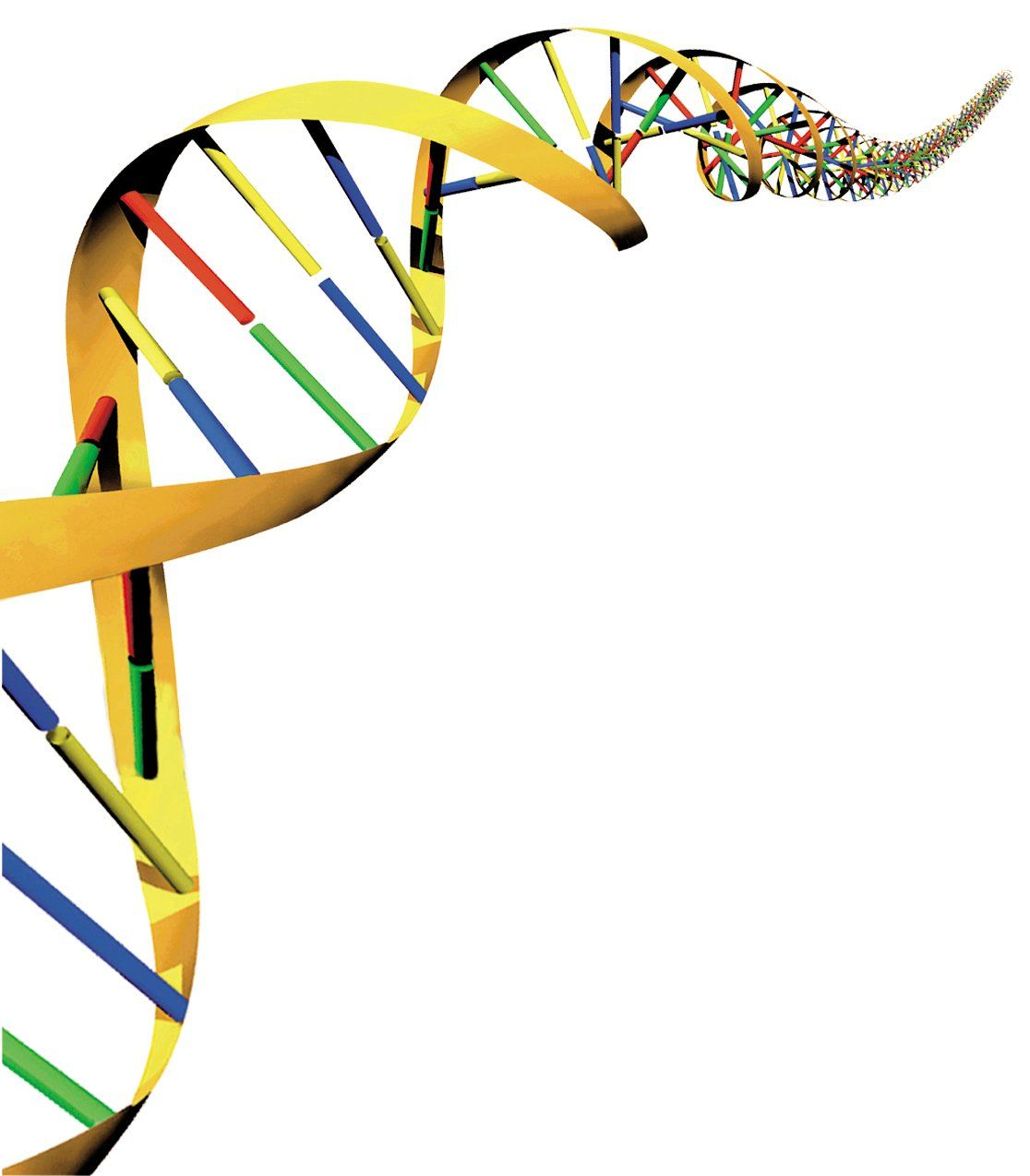 Menschlichen DNA / Genom