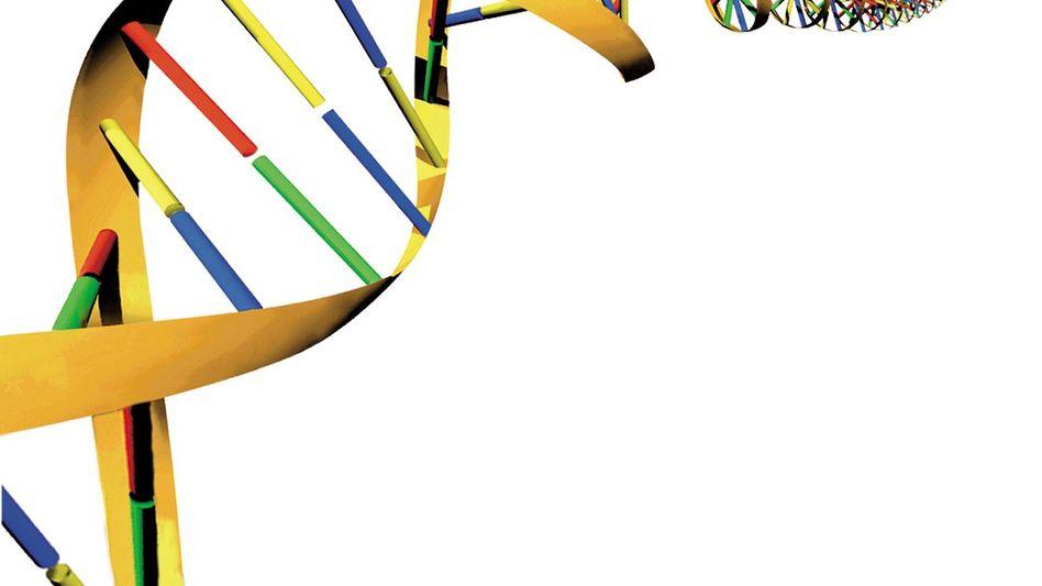 Biotechnologieunternehmen Qiagen: Weitere Restrukturierungskosten im zweiten Quartal dieses Jahres