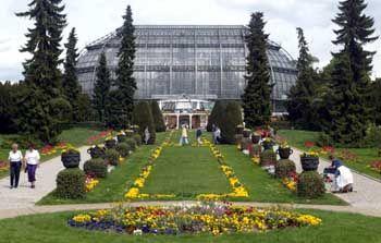 Botanischer Garten Berlin: Rund 20.000 verschiedene Pflanzenarten haben hier ihre Heimat