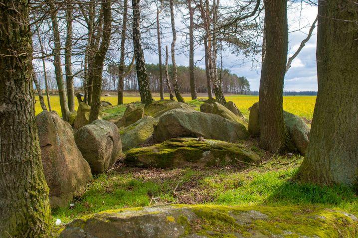 Hünengrab in der Altmark in Sachsen-Anhalt - die Gegend wirbt mit ihrer Einsamkeit.