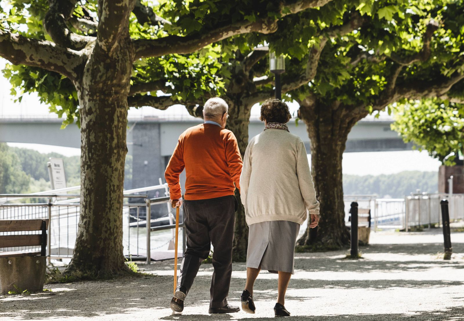 Senior couple walking in park rear view model released Symbolfoto PUBLICATIONxINxGERxSUIxAUTxHUNxON