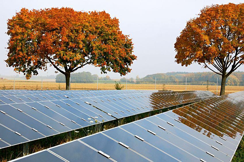 Conergy / Solarenergie Gebersdorf / Sonnenenergie / Solarpark