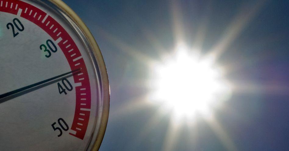 Hitze: Die Allianz will ihr Geld künftig in klimaschonende Unternehmen stecken