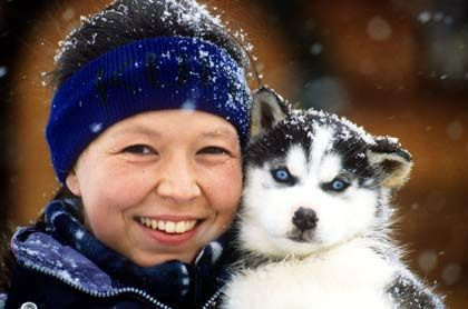 Dickes Fell und viel Power: Schlittenhunde sind optimal auf das Leben im Schnee vorbereitet