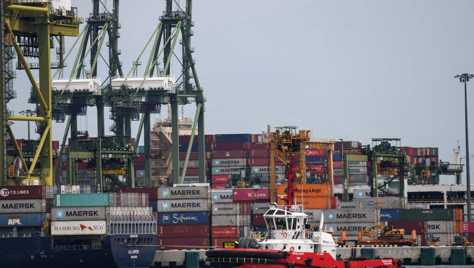 Containerschiffe und Schlepper im Hafen von Singapur
