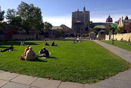 Campus der Yale University: Hohe Studiengebühren, viel Arbeitsstress