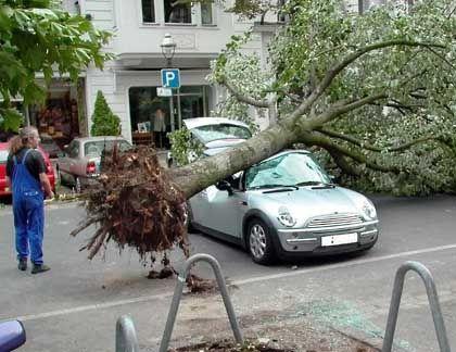 Nicht jeder mag den kleinen BMW: Bei einem Sturm im Sommer dieses Jahres wurde in Berlin ein Mini zerdrückt