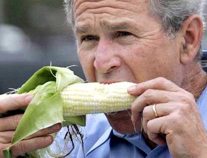 George W. Bush: Steigende Zinsen zehren kaum an seinen Chancen