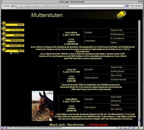 Screenshot der Homepage von Jochen Furchs Stall