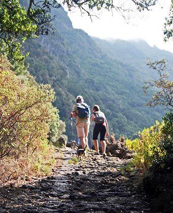 Trekkingparadies:Statt Sandstränden hat El Hierro jede Menge Wanderwege zu bieten