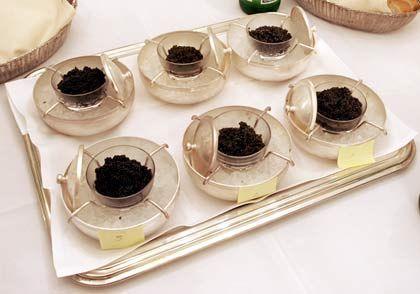 Sixpack für Geniesser: Ohne Hinweis auf Herkunft, Geschmack, Aussehen und Korngröße des Kaviars wurden zwei Wild- und vier Zuchtsorten von der mm-Jury getestet.