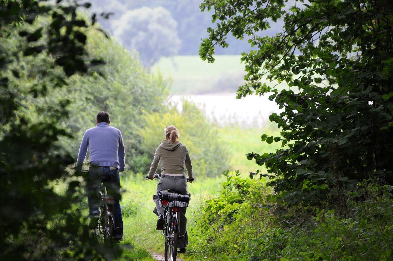 Der Elberadweg bei Lauenburg