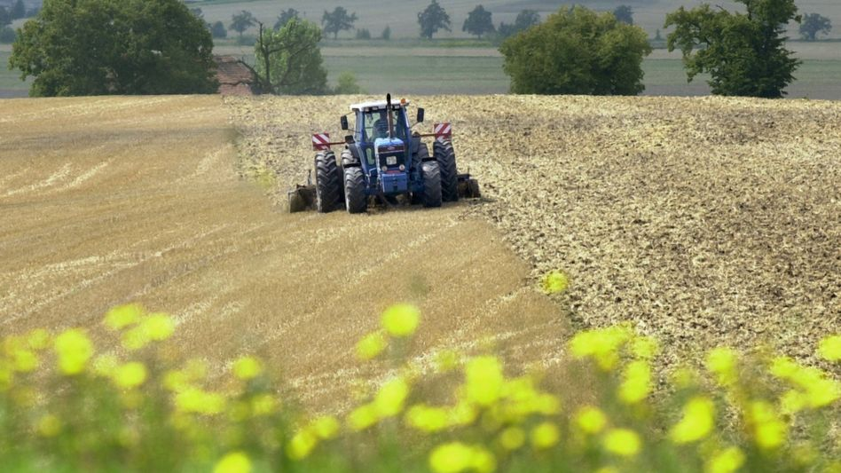 Investitionsziel Landwirtschaft: Mit KTG Agrar erleben Anleger eine bittere Enttäuschung