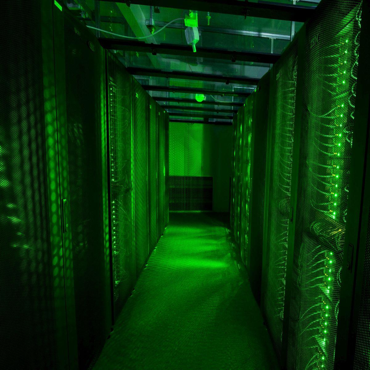 crypto phoenix investition suchen aufstrebende investmentmanager nach kryptowährung?
