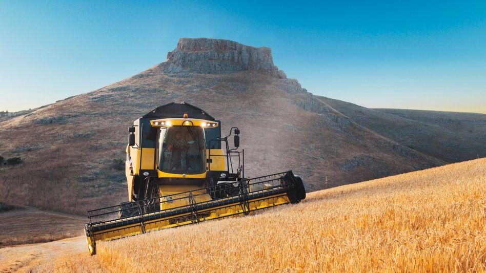 Schönes Abogeschäft: Case New Holland (Foto), Deere und Agco dominieren den Landmaschinen-(Service-)Markt