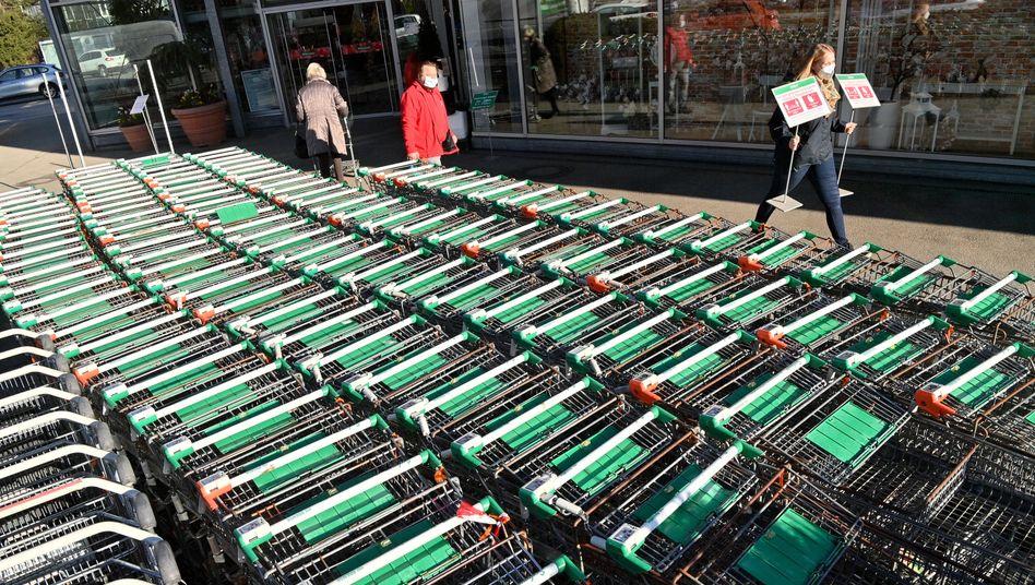 """""""Schritte der Öffnung und Schritte, die uns nicht zurückwerfen dürfen"""": Gartencenter in München bereitet sich auf die Lockerungen vor"""