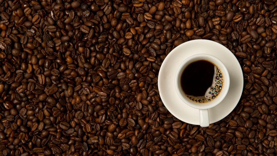 Ob die Wettbewerber nachziehen? Marktführer Tschibo senkt die Preise für ein Pfund Kaffee um bis zu 50 Cent