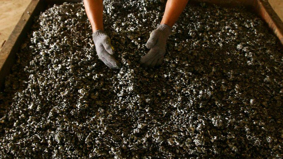 Nickel-Verarbeitung in Indonesien: Auf den Staat entfallen laut Reuters etwa 7 Prozent der weltweiten Minenproduktion des Metalls