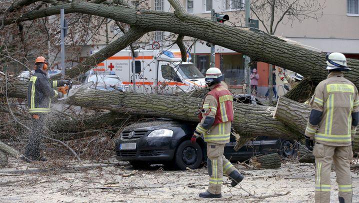"""Niklas"": Orkan tobt über Deutschland"