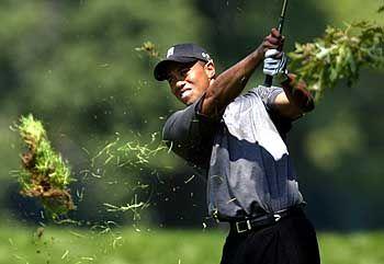 Tiger Woods: Laut einem Bericht der NYT bot die VC-Firma Angel Investors ihren Kunden in den Jahren 1999 und 2000 die Möglichkeit, über zwei Fonds unter anderem auch in Google zu investieren. Golfprofi Woods soll einer von ihnen sein.