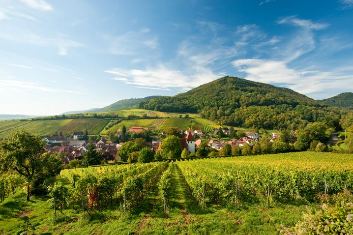 Weinland: In Rheinland-Pfalz wird es dann schon gerne mal etwas bergiger