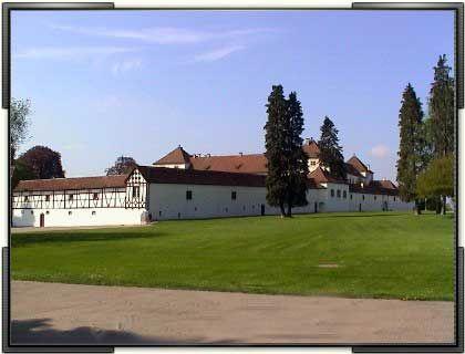 Weitläufige Anlage: Im Park des Schlosses wachsen auch ginko-Bäume