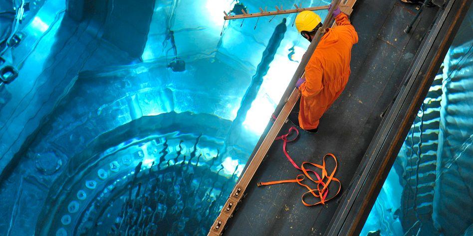 Ein Arbeiter im AKW Grafenrheinfeld (Unterfranken): Revision der Messsonden im Reaktordruckbehälter