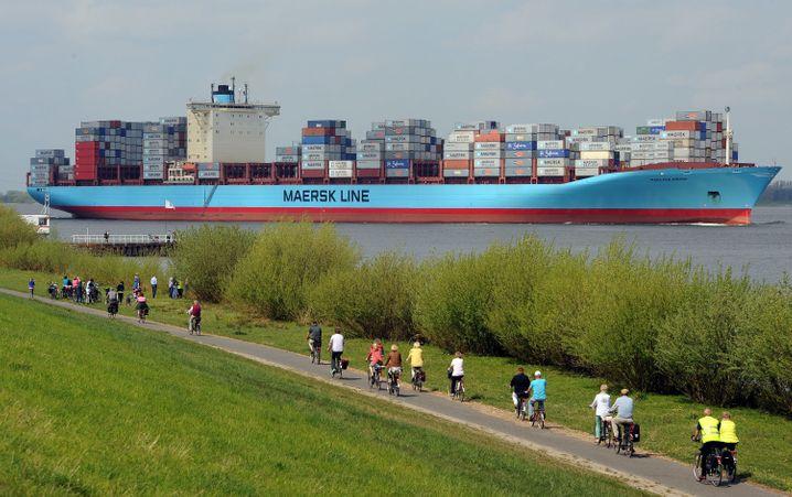 Das Alte Land ist eine Region in Hamburg und Niedersachsen, die sich für ausgedehnte Radtouren empfiehlt - hier eine Szene am Elbedeich bei Borstel.