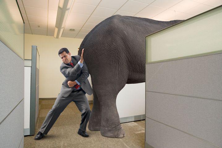 Mammut-Aufgabe: Lassen Sie sich von Ihren Ängsten nicht beherrschen