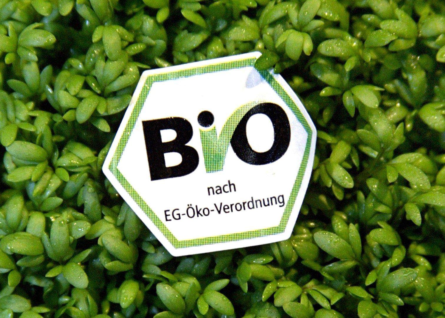 Bio-Lebensmittel / Kresse