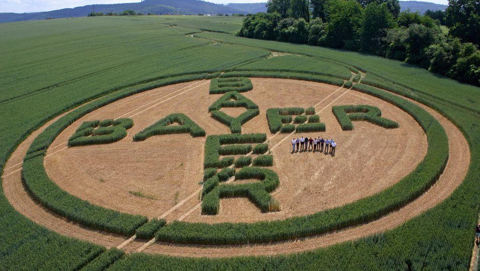 Bayer Crop Science: Die Sparte bereitet Bayer Probleme, jetzt korrigiert Bayer die Prognose für den ganzen Konzern