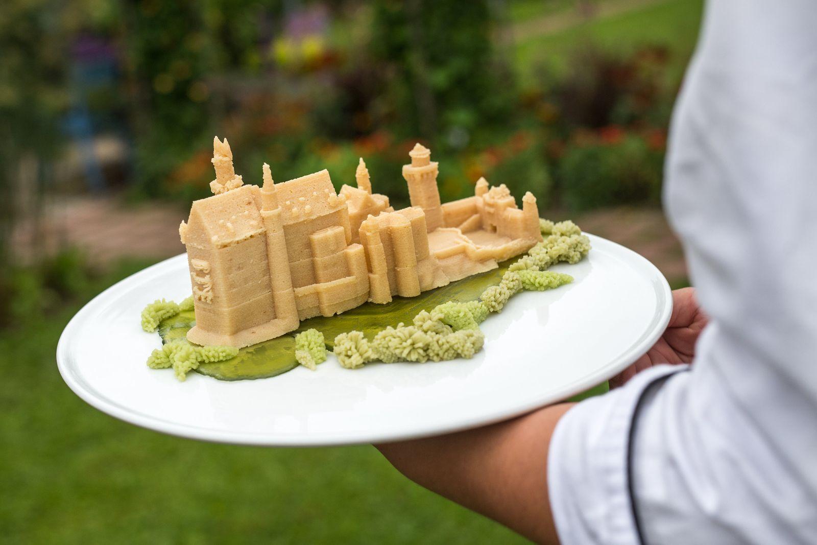 3D-Lebensmitteldrucker Bocusini