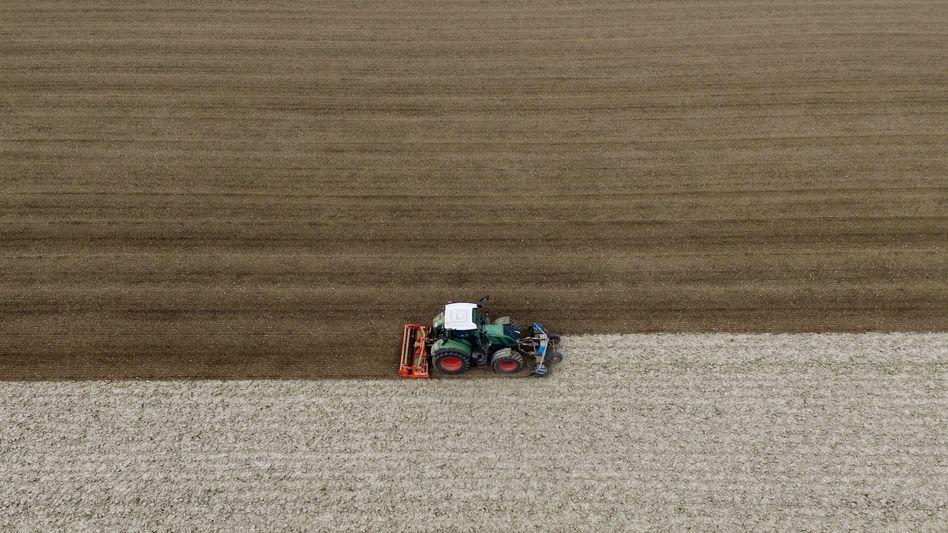 Landwirtschaft: Bayer muss seinen Unkrautkiller Liberty abgeben