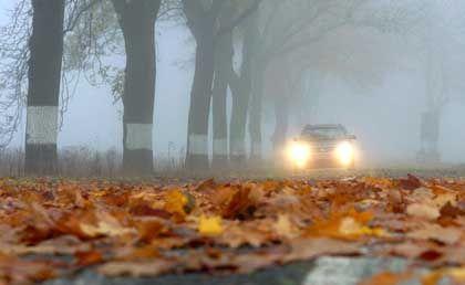 Sicherheit auch bei schlechtem Wetter: So genannte intelligente Fahrassistenzsysteme sind derzeit ein wichtiges Thema für die Autobauer