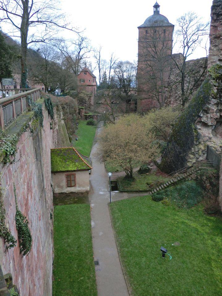 Der Maltesergraben im Schloss Heidelberg birgt eine geologische Rarität. Hunderte Millionen Jahre alte Gesteinsschichten treffen hier aufeinander.