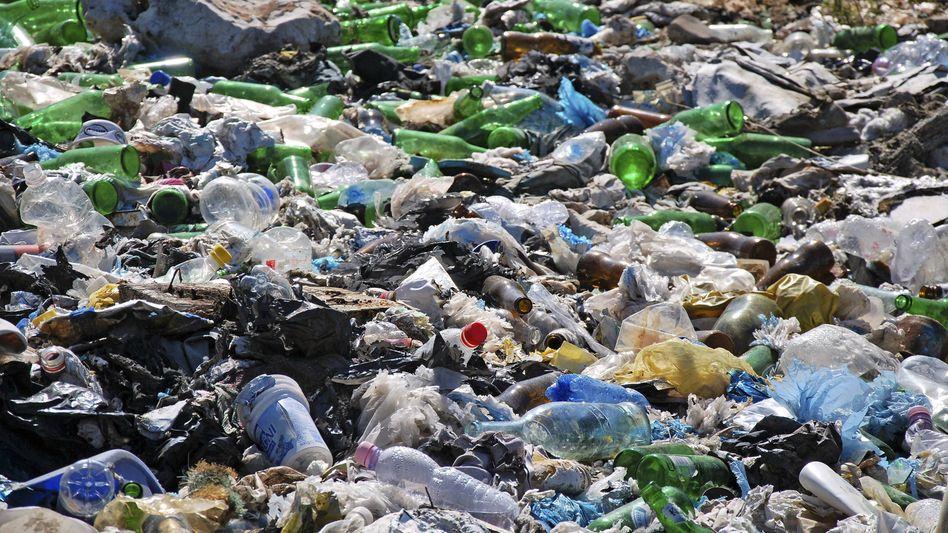 Alles Müll: Plastik stellt ein Problem als Belastungsfaktor für die Umwelt dar