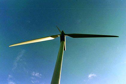Abgeschaltet: Von der Windkraft hat sich Conergy-Chef Ammer inzwischen verabschiedet. Experten streiten, ob das Unternehmen noch eine Zukunft hat