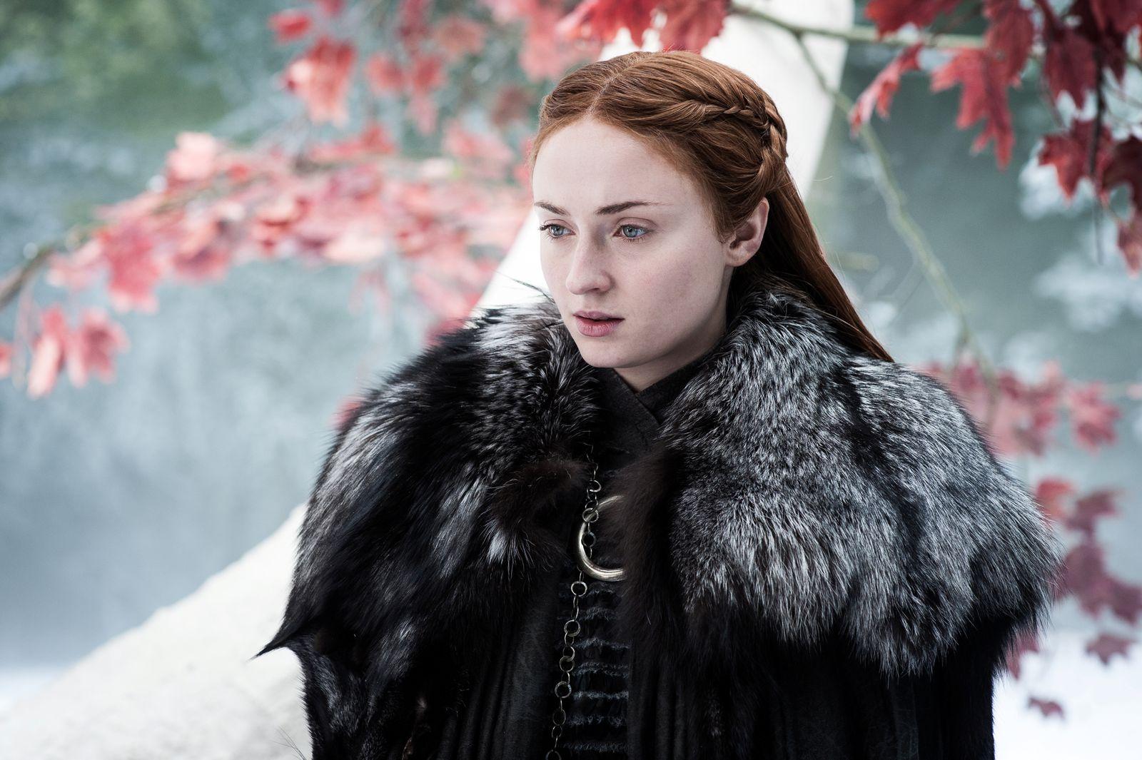 EINMALIGE VERWENDUNG Game of Thrones - Das Lied von Eis und Feuer