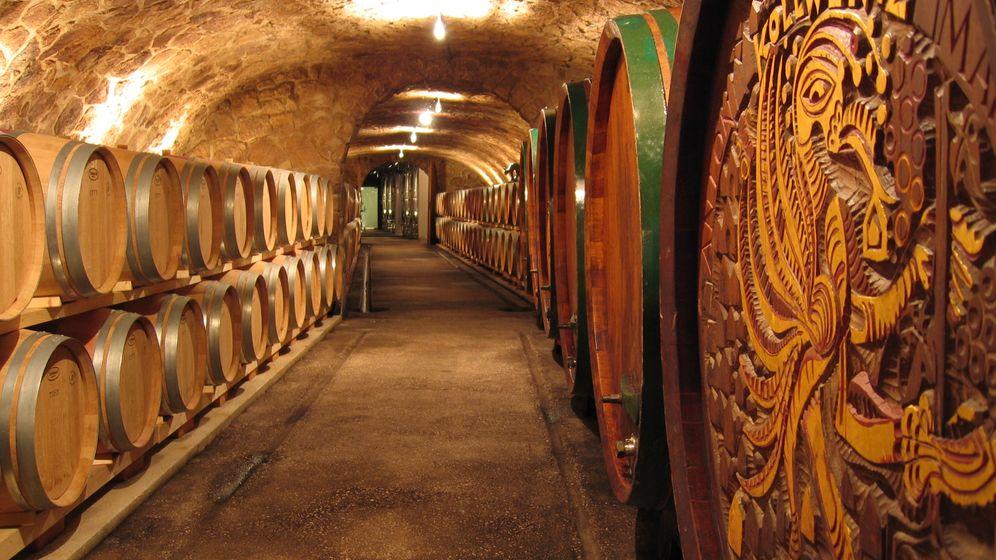 Genießertipps: Die besten Weine aus dem Burgenland
