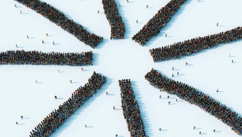 Die Weisheit der Massen bündeln: Crowdsourcing kann erfolgreich sein, wenn engagierte Personen die Innovationsmarktplätze koordinieren