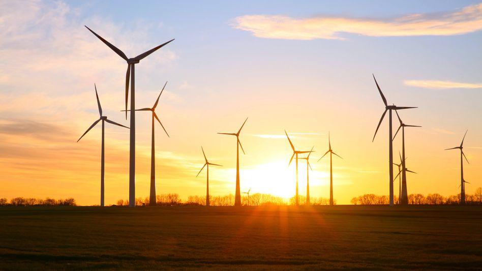 Stürmischer Markt: Windpark in Mecklenburg-Vorpommern