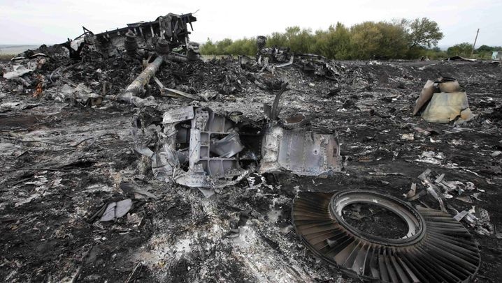 Absturz von Malaysia Airlines MH17: Trümmer, Opfer, Folgen