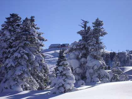 Tief verschneit: In Uludag ist bis Mitte April mit guten Schneebedingungen zu rechnen