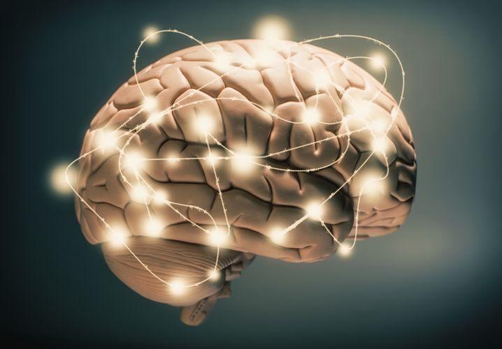 Futter fürs Hirn statt Kantinenessen: Mit E-Learning-Programmen kann man die Mittagspause produktiv nutzen